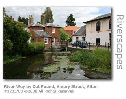 River Wey in Alton, Hampshire