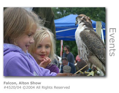 Falcon at Alton Agricultural Show