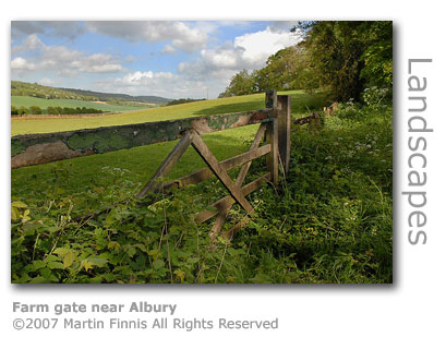 Farm gate near Albury by Martin Finnis