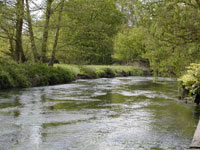 River Blackwater near Eversley