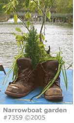 NARROWBOAT BOOT GARDEN