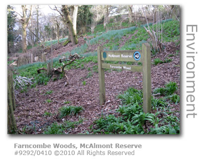 Farncombe Woods, McAlmont Reserve at Farncombe Hill