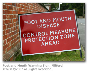 Foot and Mouth Warning Sign, Milford