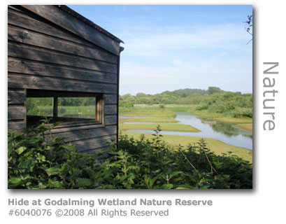 Bird-watching Hide at Godalming Wetland Nature Reserve