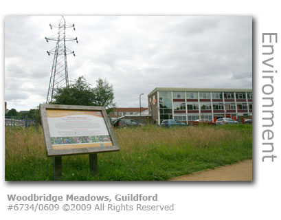 Woodbridge Meadows, Guildford