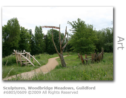 Sculptures at Woodbridge Meadows, Guildford