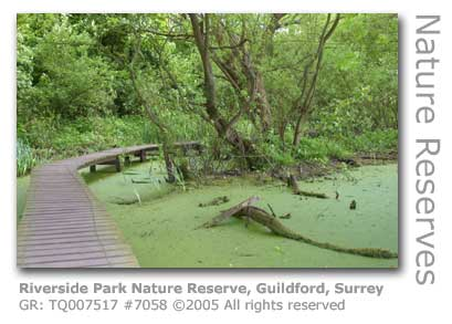 RIVERSIDE NATURE RESERVE GUILDFORD