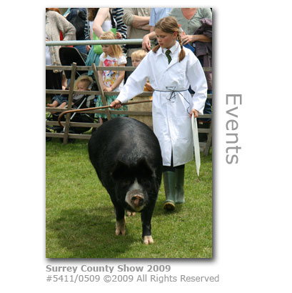 Surrey County Show 2009 exhibitor