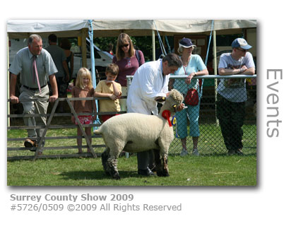 Surrey County Show exhibitor 2009