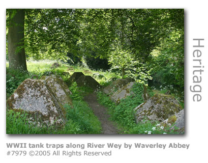 WWII tank traps by River Wey at Waverley Abbey