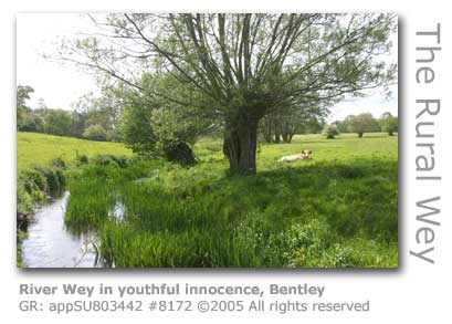 WEY NEAR BENTLEY HAMPSHIRE